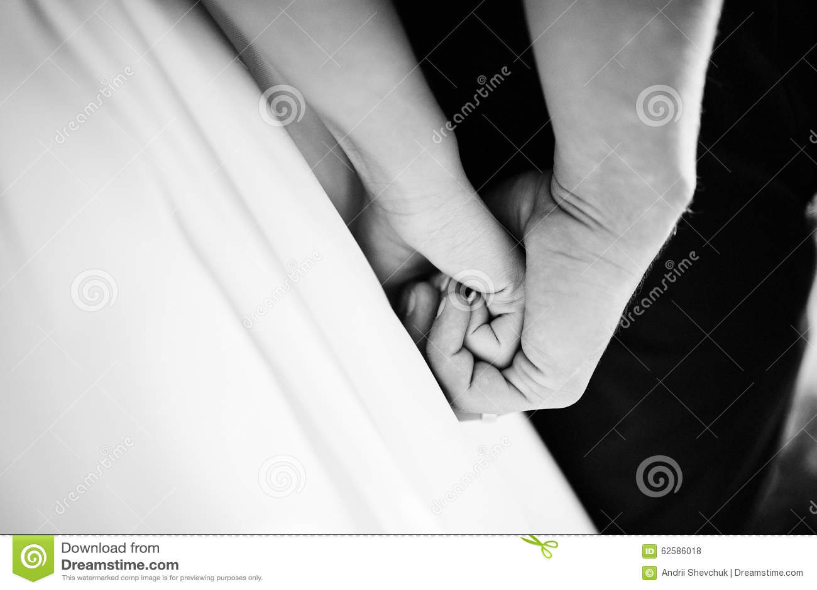 Hand An Hand Von Hochzeitspaaren Stockfoto Bild Von Leicht Wald