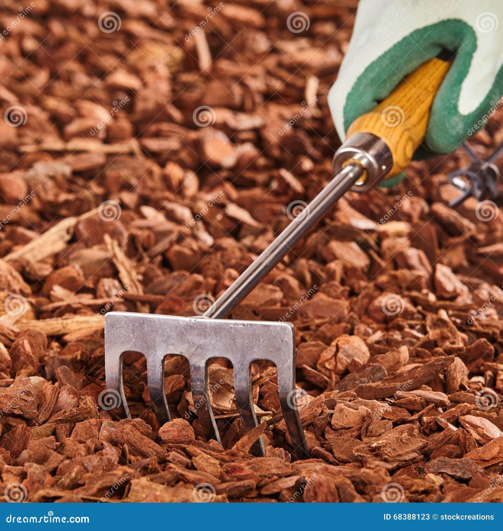 Hand held garden rake over wood chips stock photo image