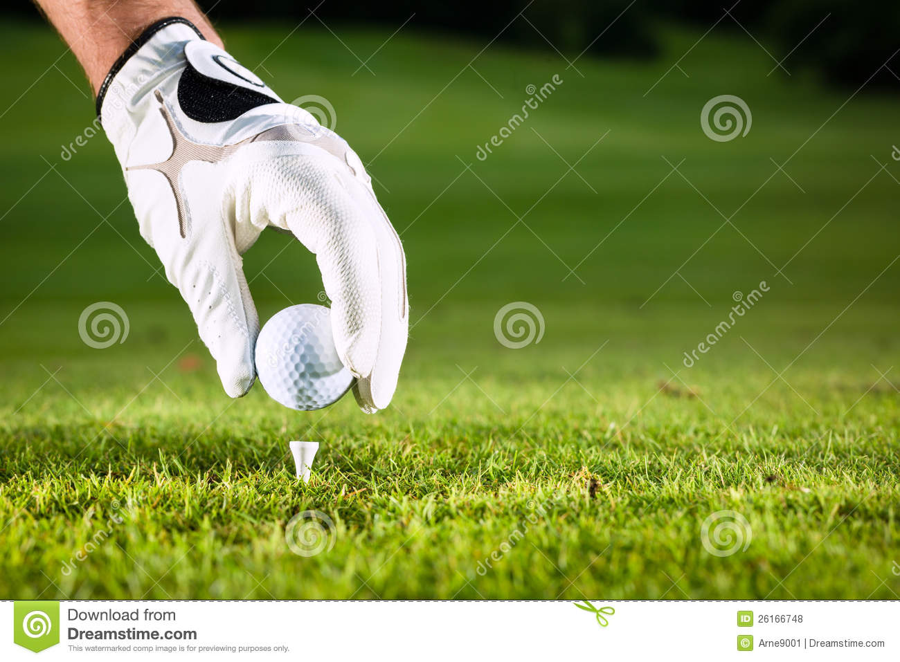 Hand Hold Golf Ball With Tee On Course Royalty Free Stock ... Golf Ball On Tee Clipart