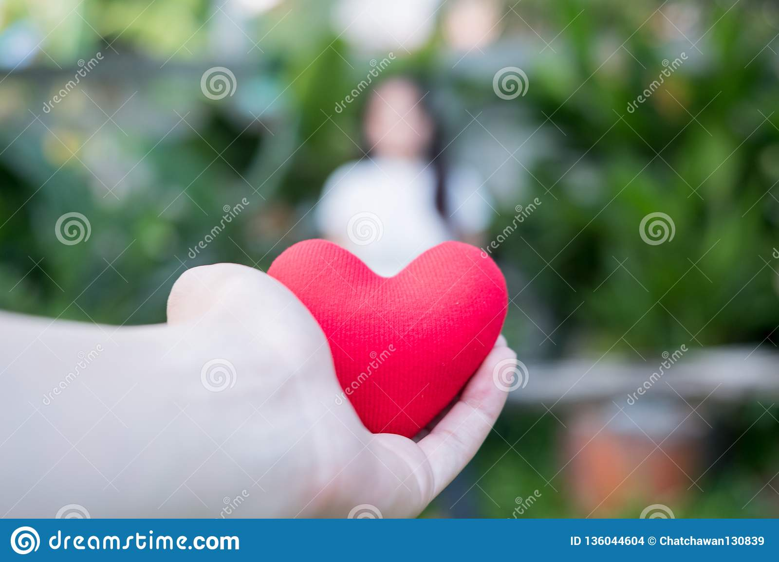 Hand are hold a red heart in the evening to replace the love in the Valentine.Give heart or love and concern to each other.Have