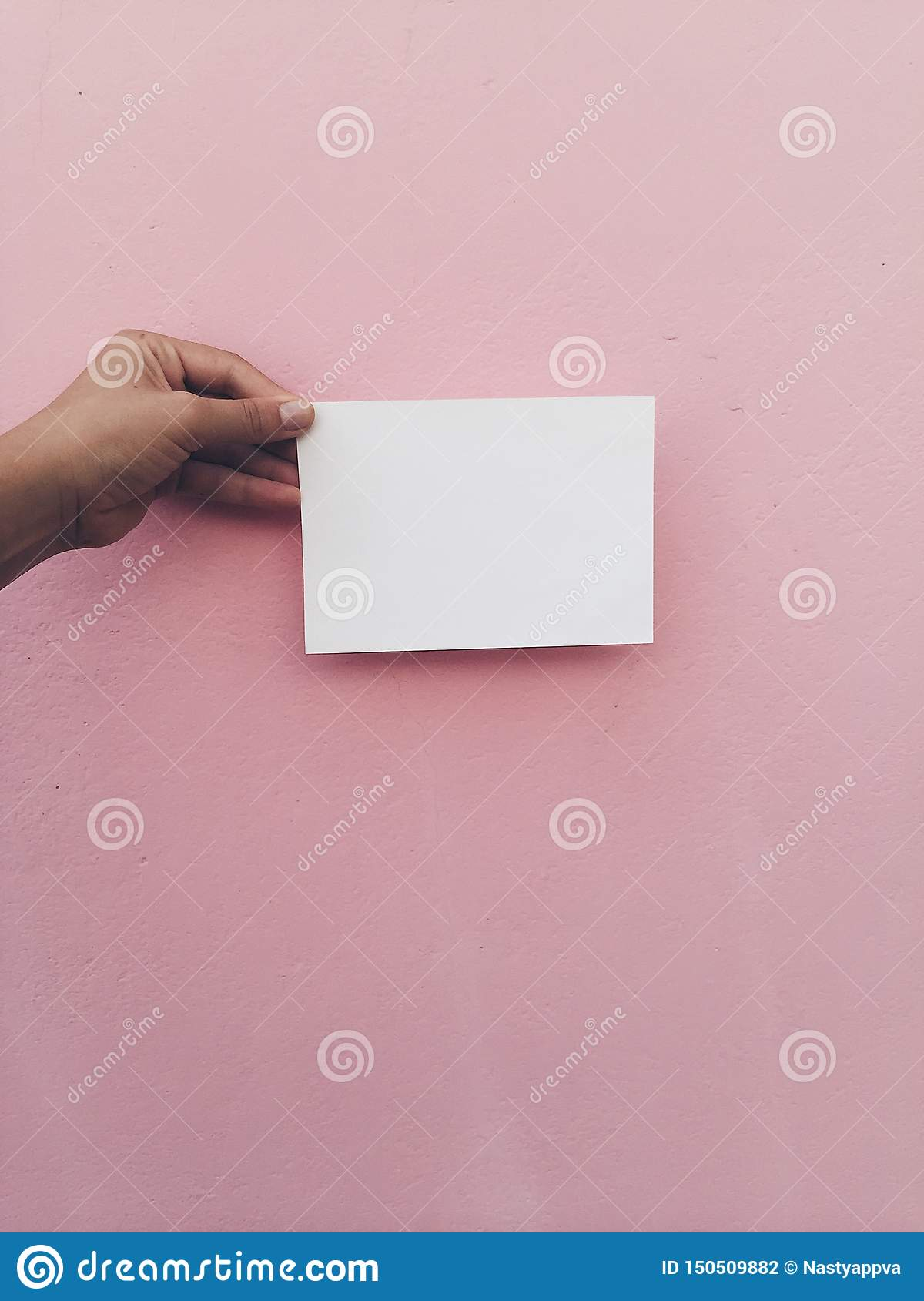 Hand hold white card at pink wall background