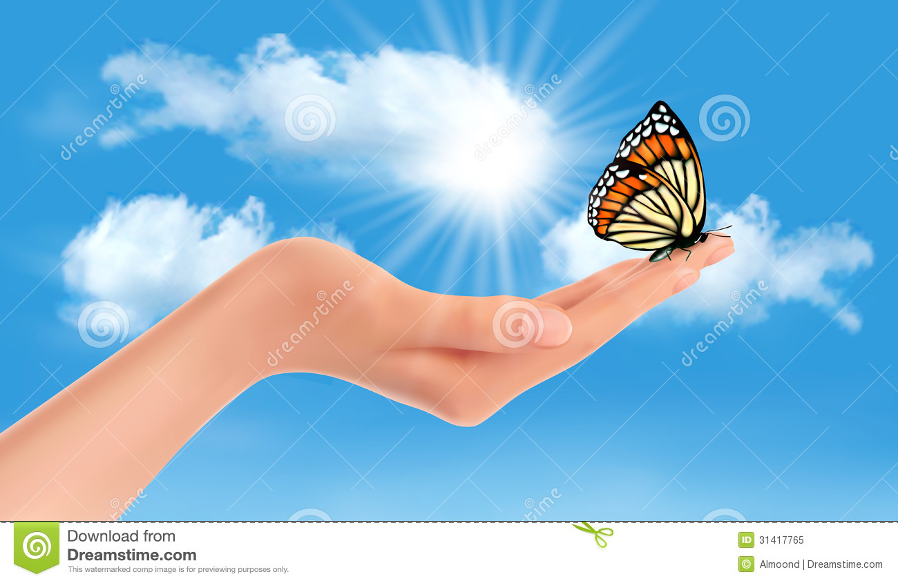 Popular Wallpaper Butterfly Hand - hand-holding-butterfly-against-blue-sky-su-sun-vector-illustration-31417765  Image_525594.jpg