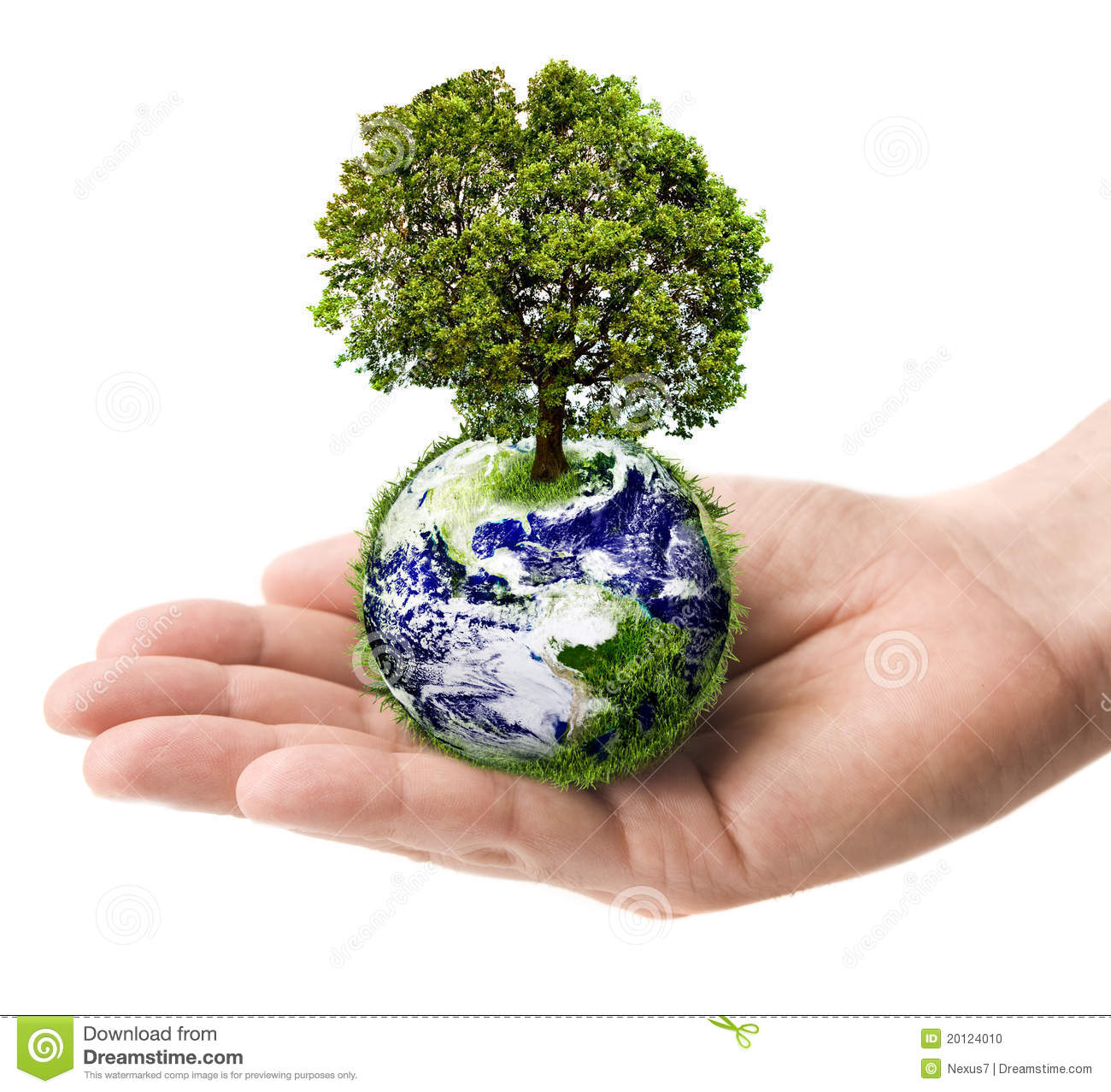 3d Building Drawing Hand Holding Earth With Tree Stock Photo Image 20124010