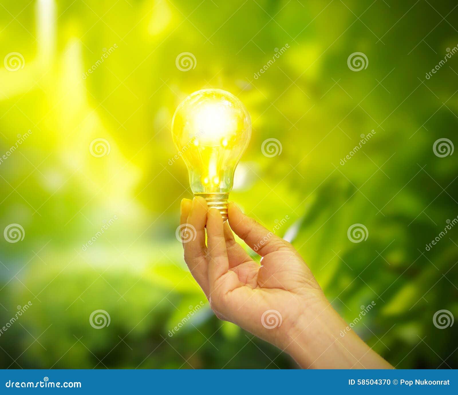 Light Bulb Wallpaper: Hand Holding A Light Bulb With Energy On Fresh Green