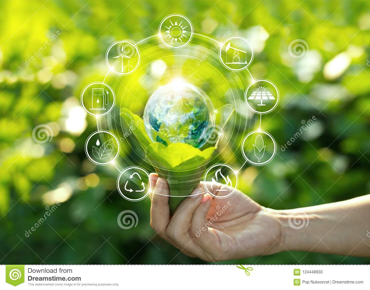 Hand Holding Light Bulb On Green Leaves With Energy Source