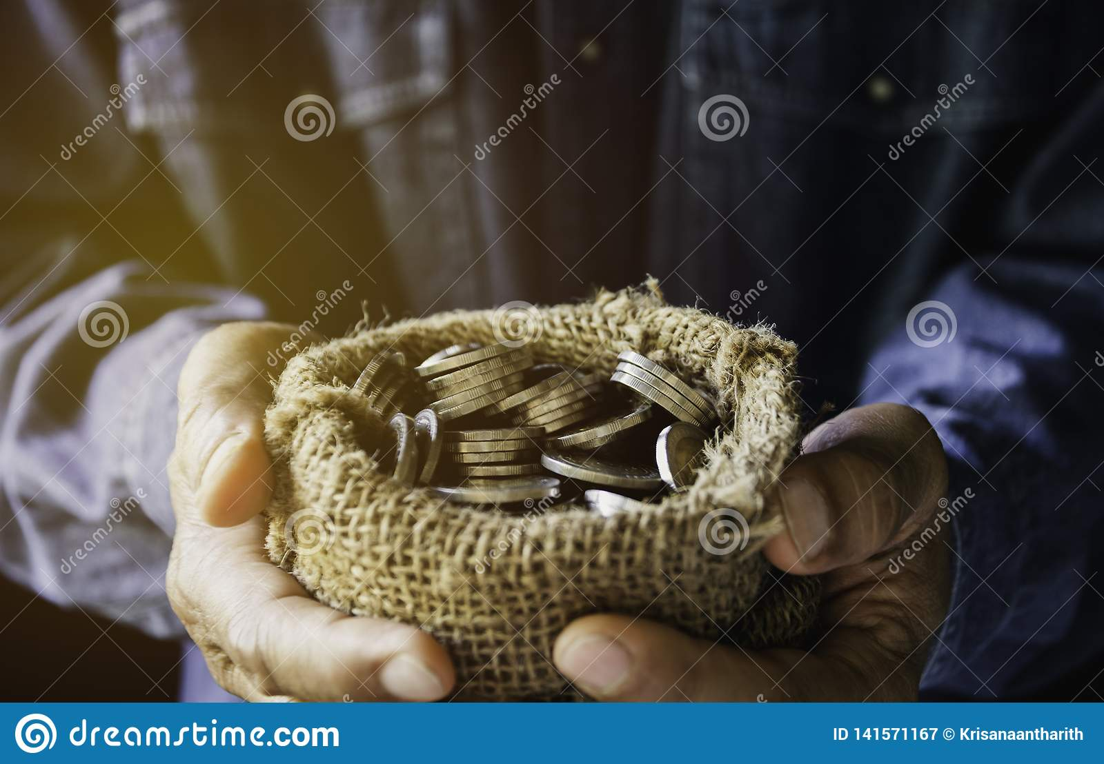 Hand holding money gold coins with plant in hand for financial and saving money concept