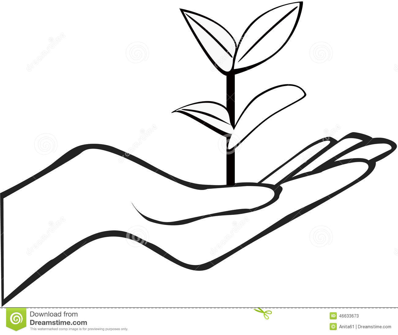 Grapevines Vineyards together with Sansevieria besides Stock Illustration Hand Holding Plant Small Image46633673 further Planta Joven also 37077. on plant sprout