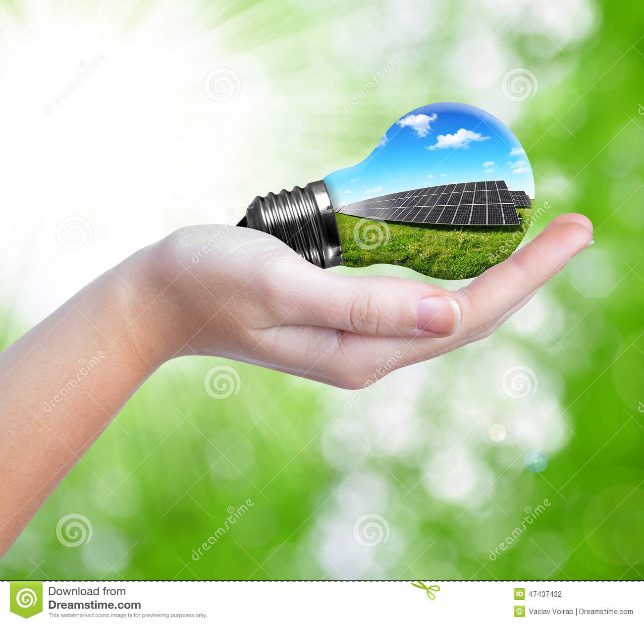 Hand Holding Solar Panels In Light Bulb Stock Photo - Image of