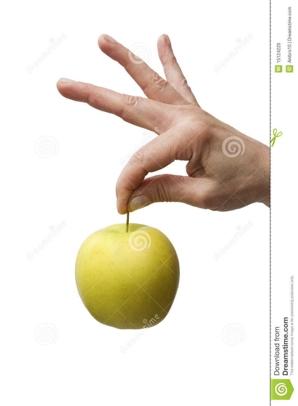 Hand Holding A Yellow Apple Stock Photo - Image of fruits ...