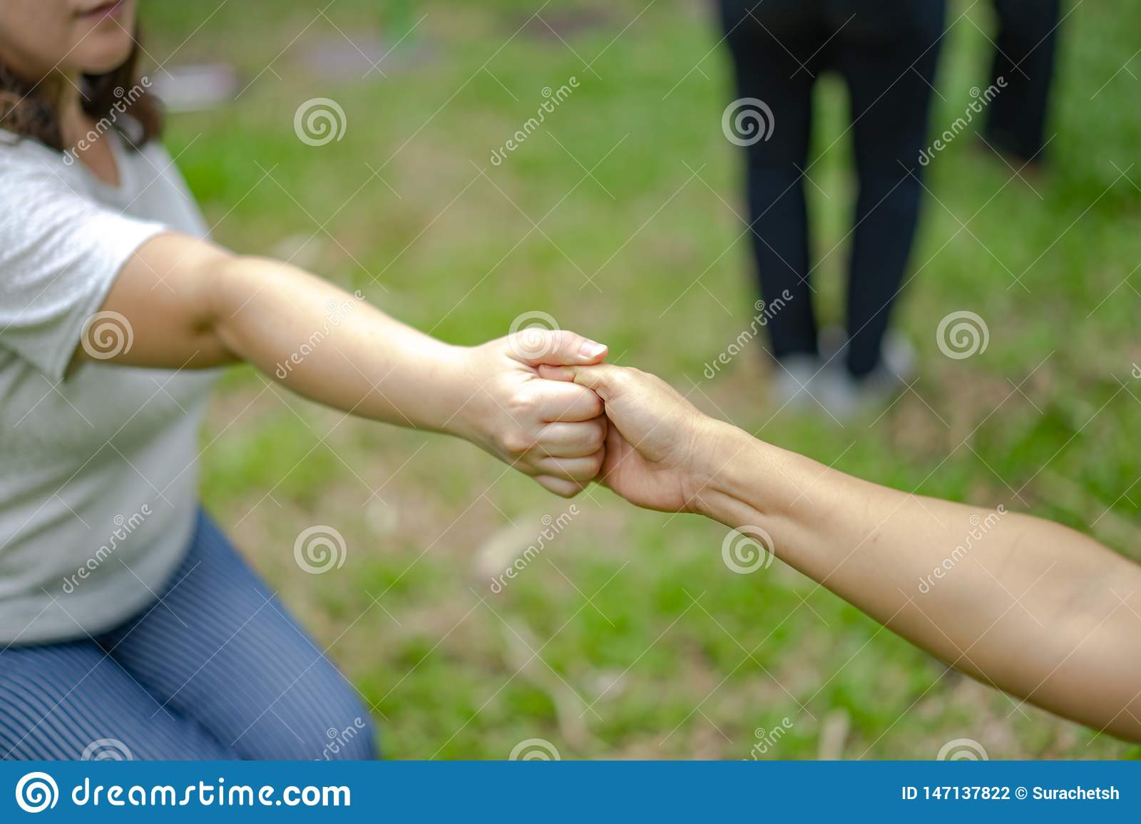 Hand holds together in the community in the garden / park