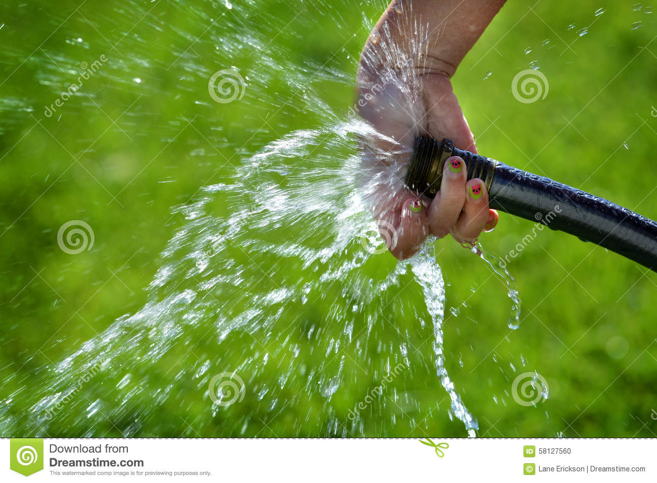 How To Run Plumbing Hand And Hose Squirting Fresh Water On Grass Stock Photo