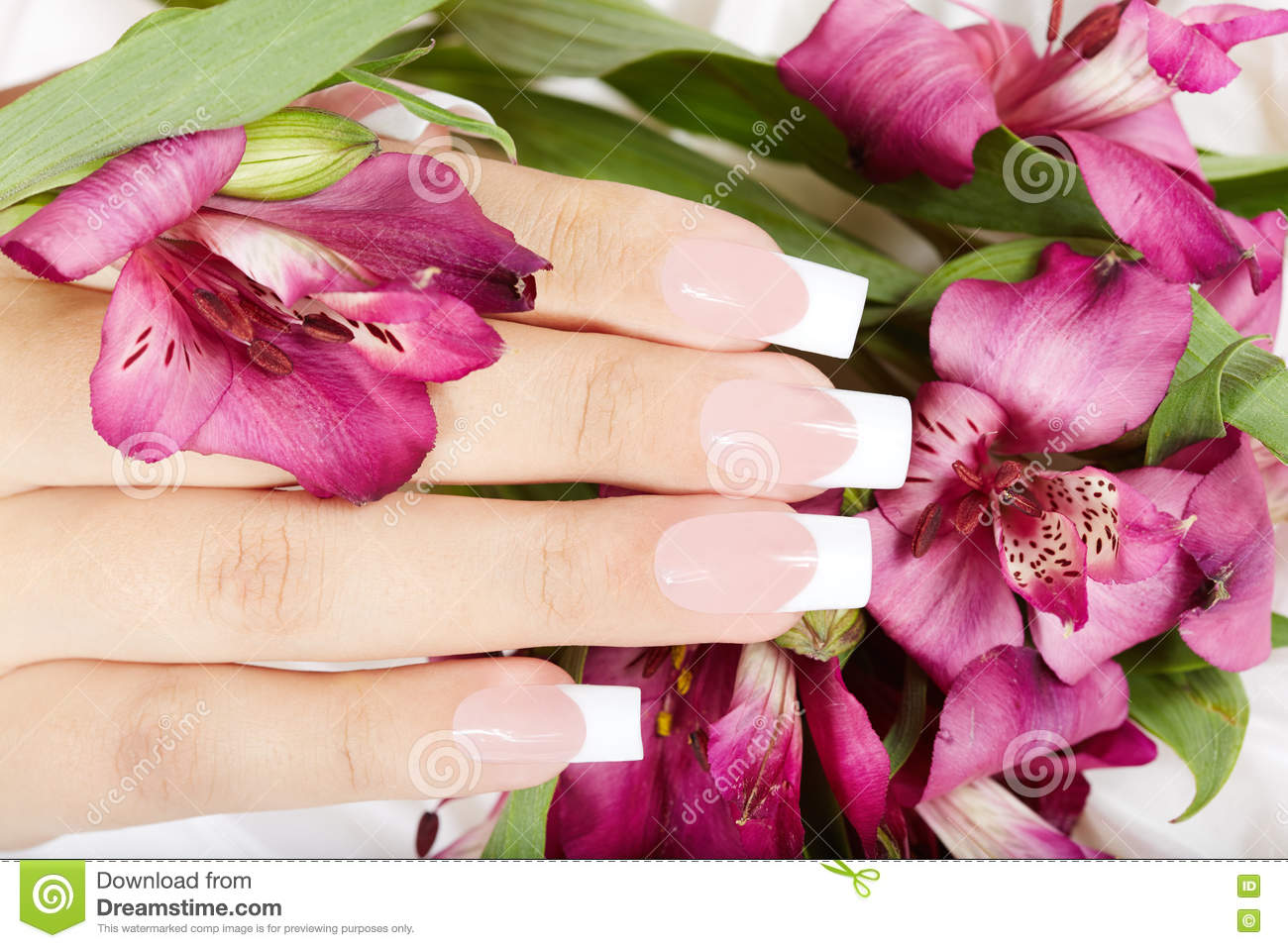 Hand with long artificial french manicured nails and lily flowers hand with long artificial french manicured nails and lily flowers izmirmasajfo