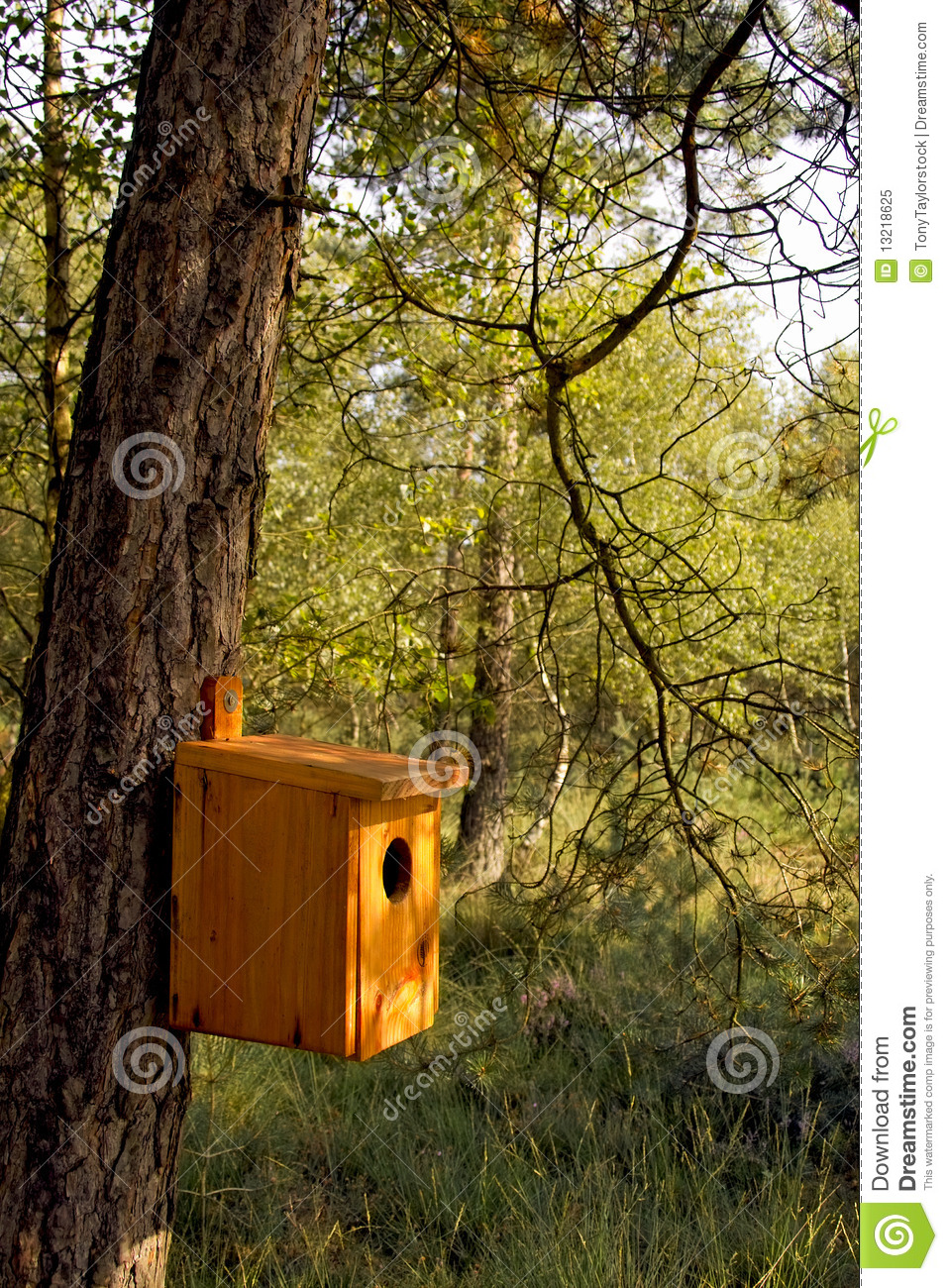 Hand Made Bird House Hanging On A Tree Trunk Royalty Free