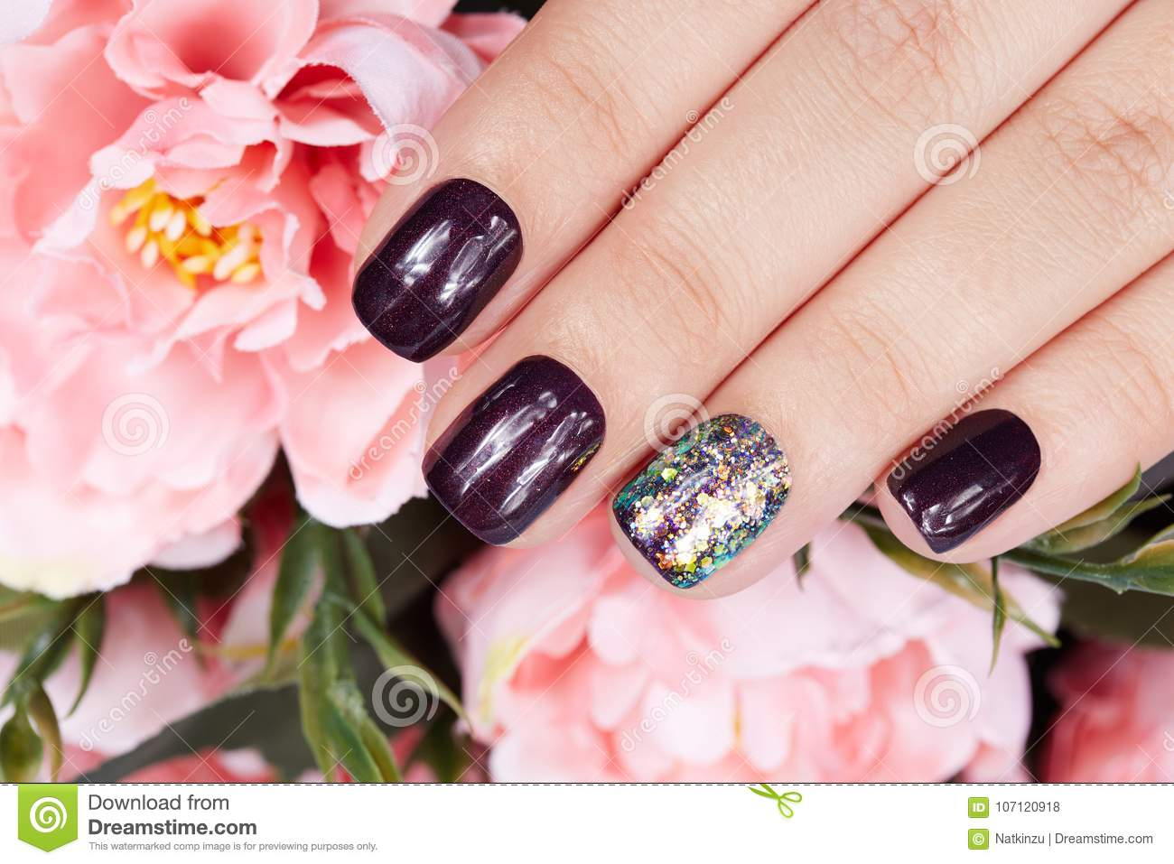 Hand with manicured nails colored with dark purple nail polish and pink peony flower