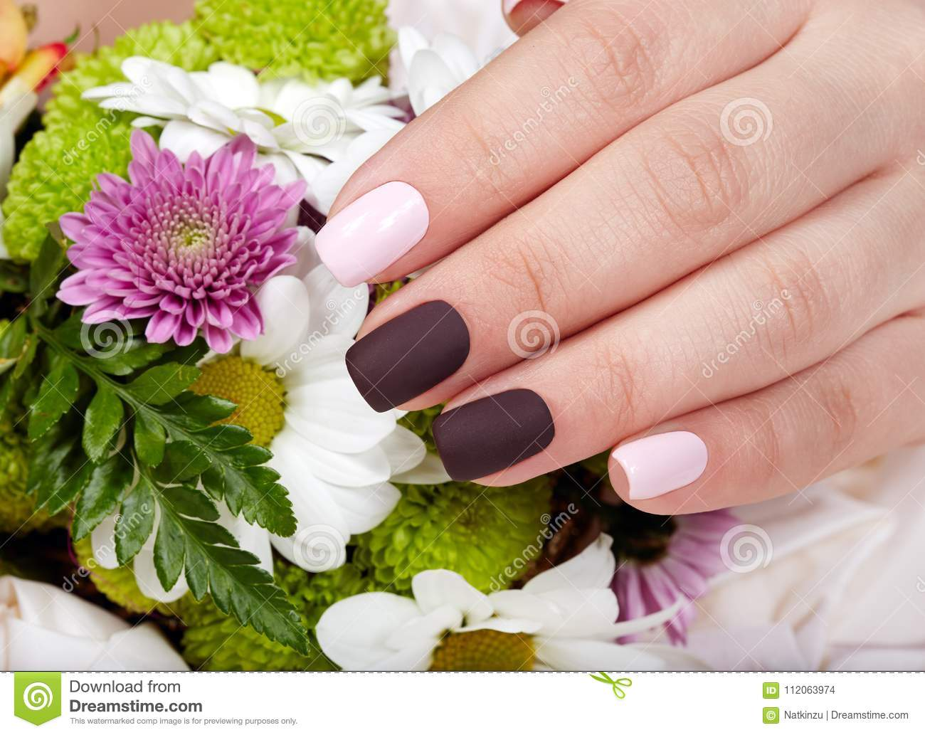 Hand with manicured nails colored with pink and purple nail polish download comp izmirmasajfo