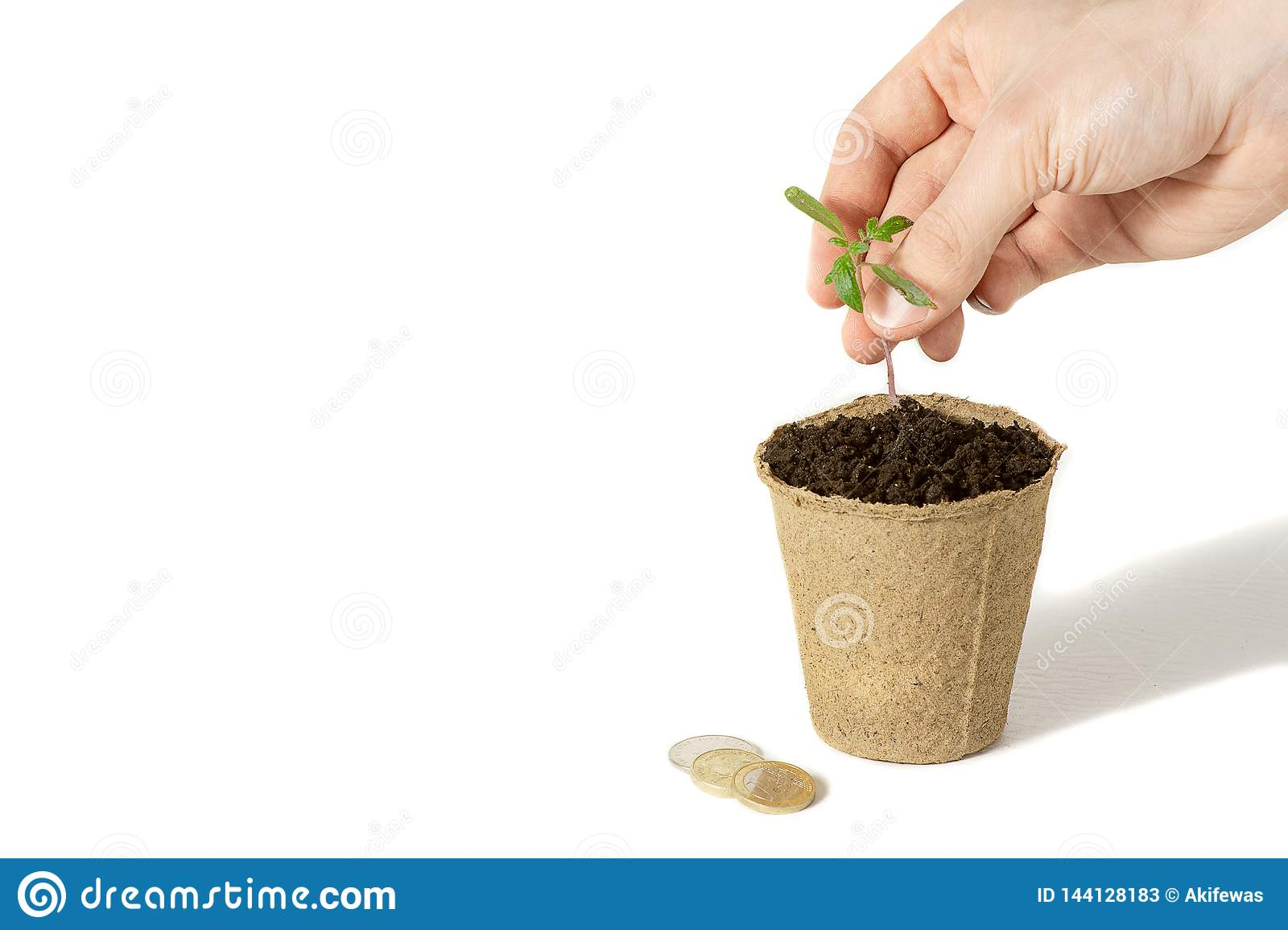 Hand of the men were planting tomato the seedlings into the ground to dry.The concept of eco-friendly packaging