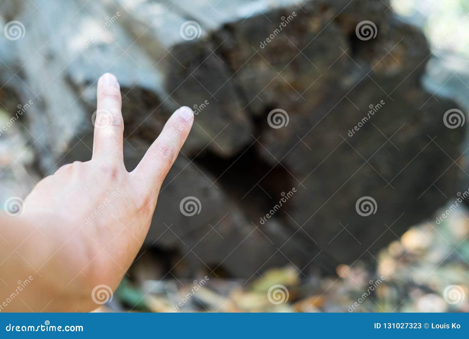 Hand och trä för v-tecken