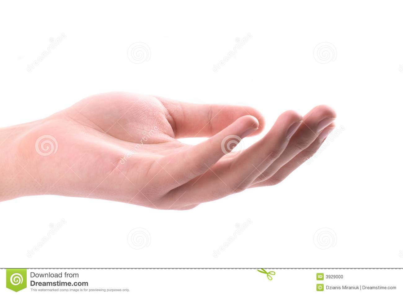 Hand, Open Palm Stock Photo - Image: 3929000 Hand