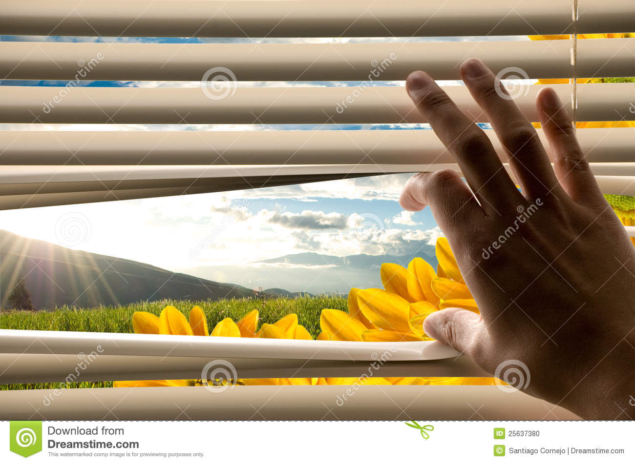 Hand Opening Blinds With Beautiful Landscape View Stock