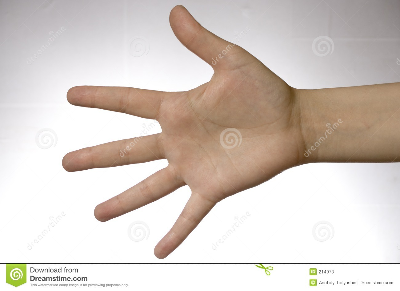 Download Hand over white stock image. Image of white, thumb, over - 214973