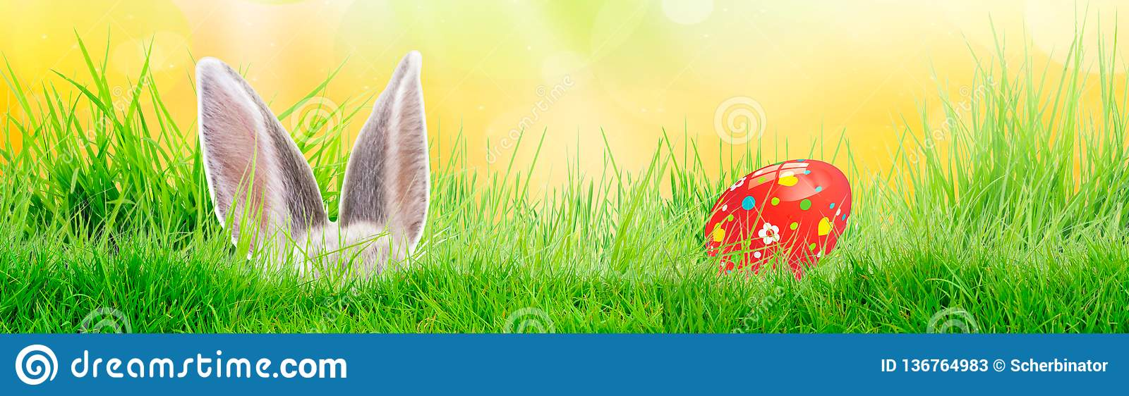 Hand painted Easter egg on grass with bunny. Panorama, banner. Floral, colorful spring patterns and designs. Traditional, artistic