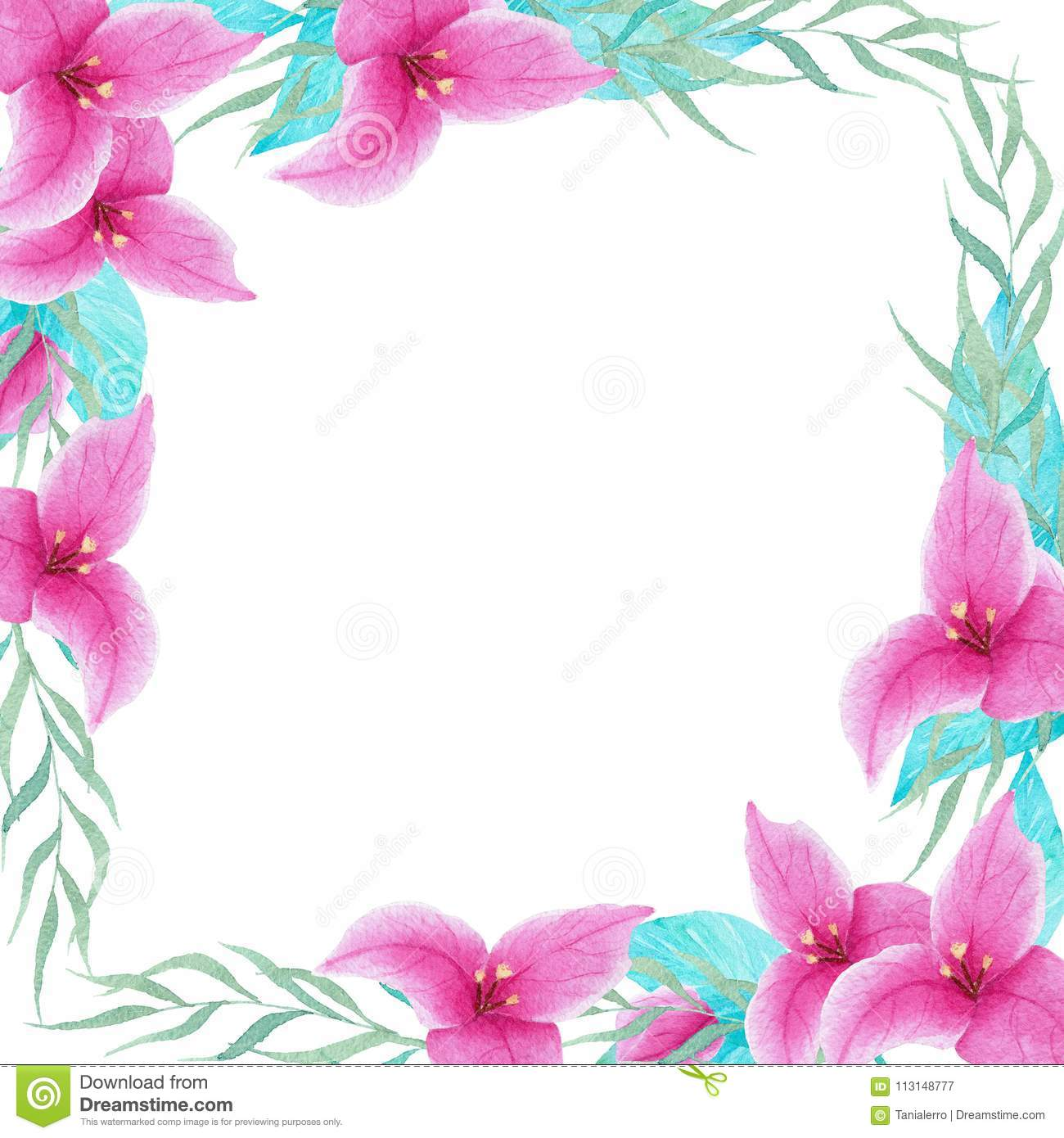 Hand Painted Watercolor Bouganvillea Flower Frame Border. Perfect ...