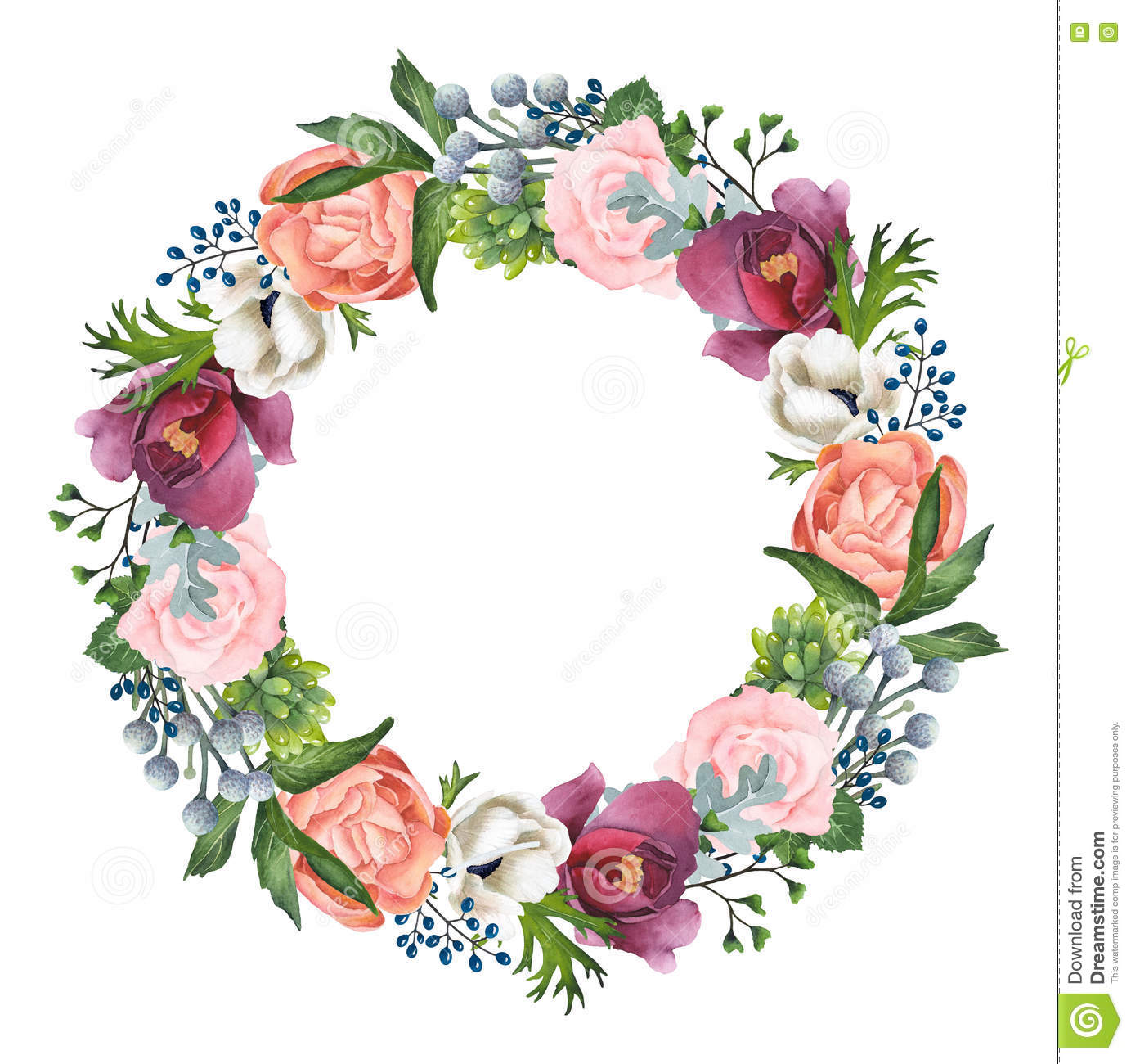 Hand Painted Watercolor Roses Anemones And Peonies Wreath Stock Illustration