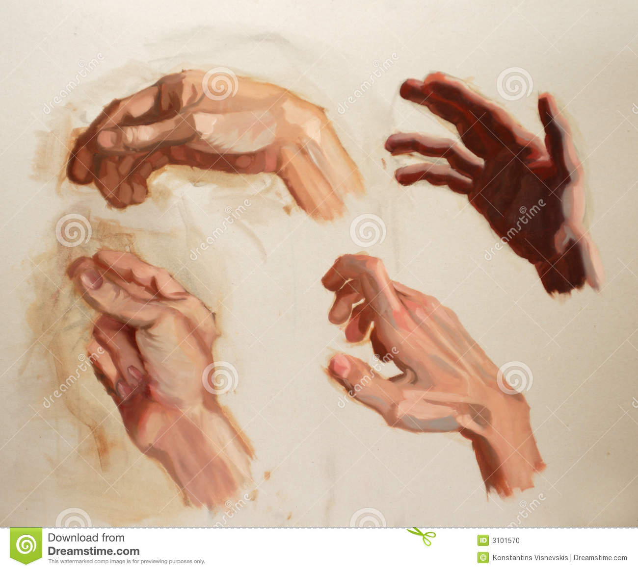 Hand painting study stock photo image 3101570 for Watercolor paintings of hands