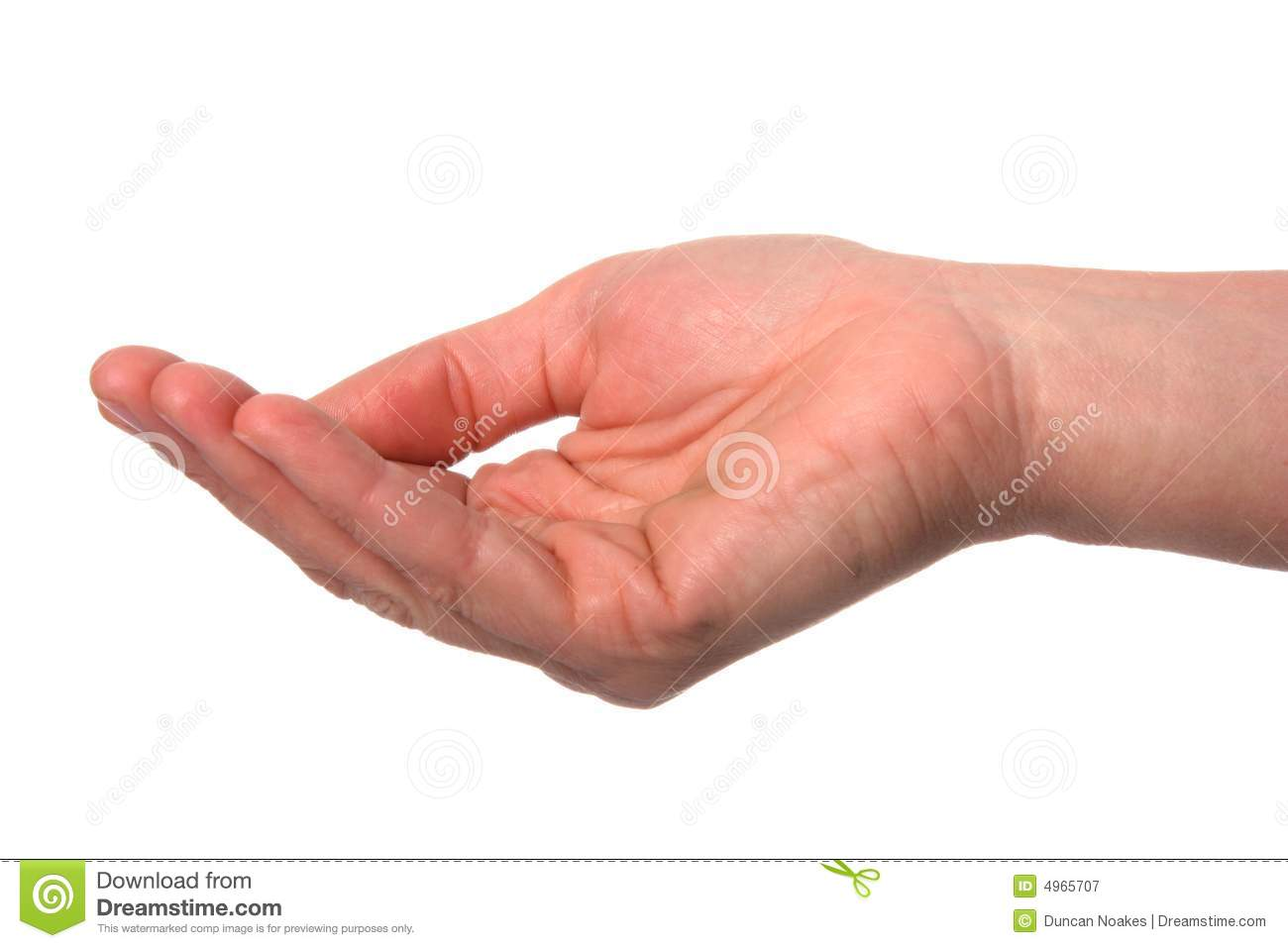 hand   palm up royalty free stock photography   image 4965707