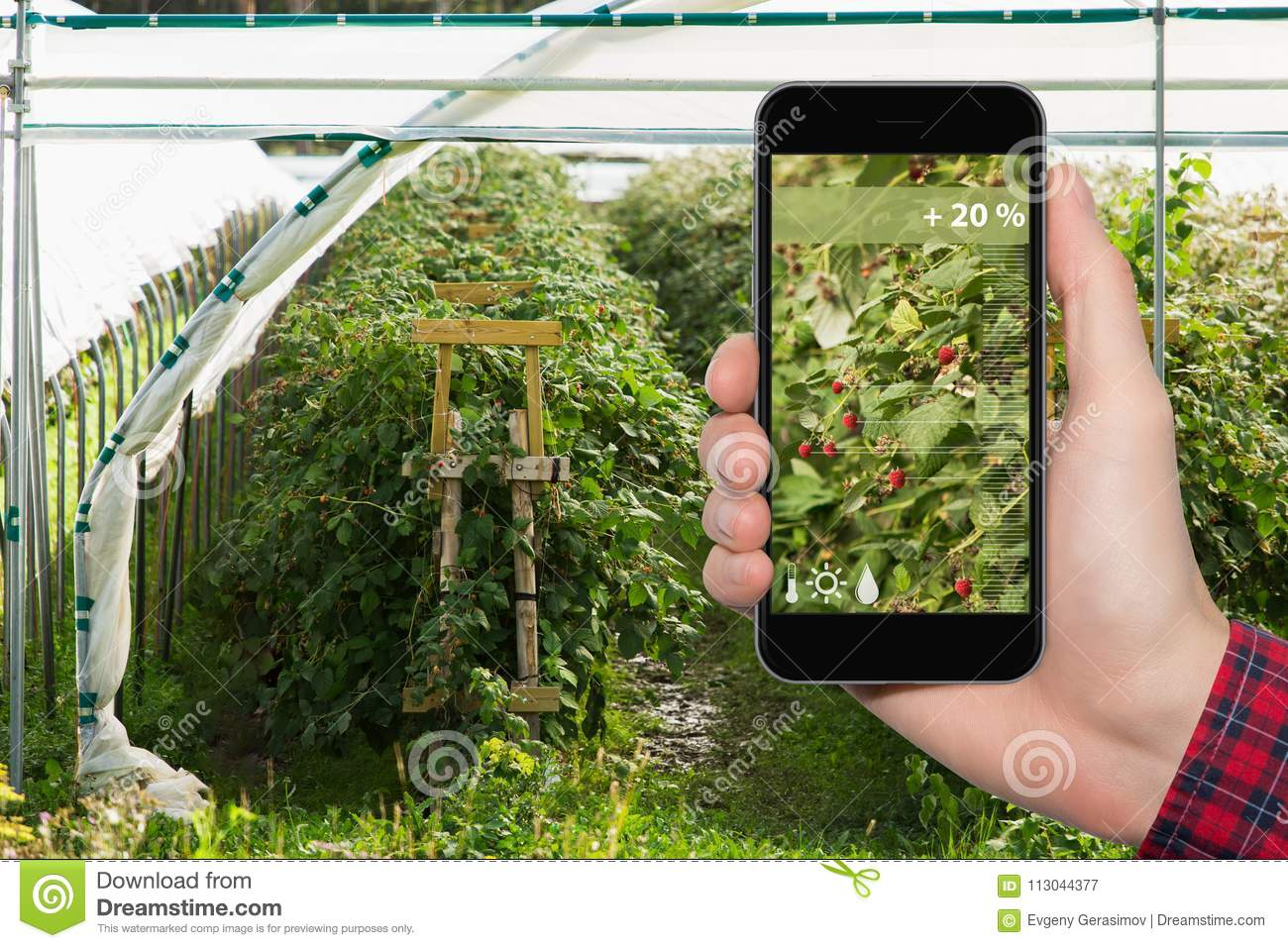 Internet Of Things In Agriculture And Smart Farming Stock Image