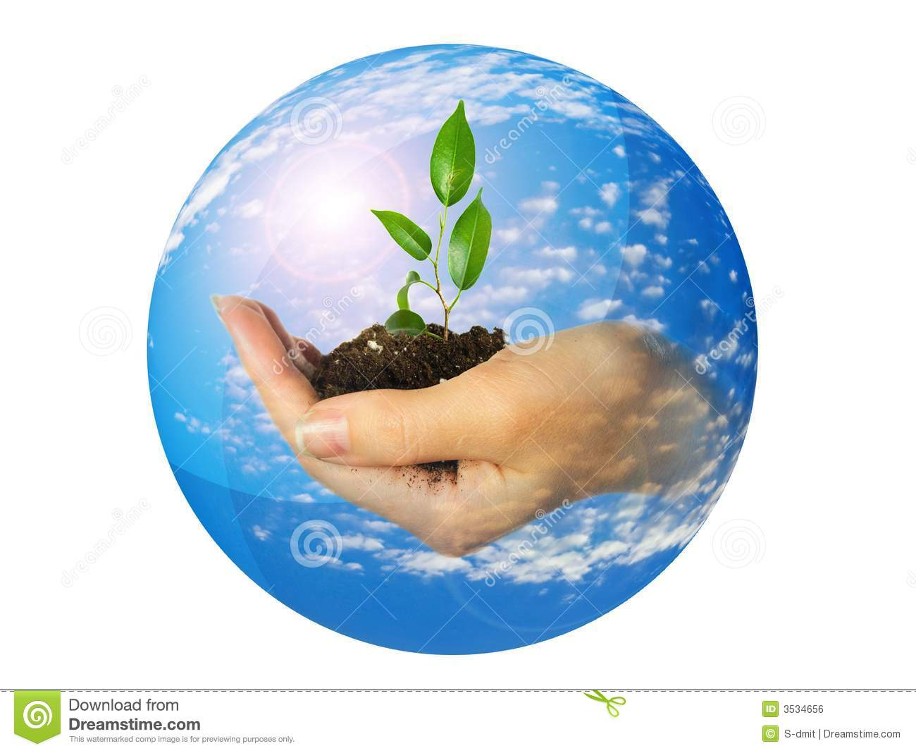 Hand With Plant Royalty Free Stock Image - Image: 3534656
