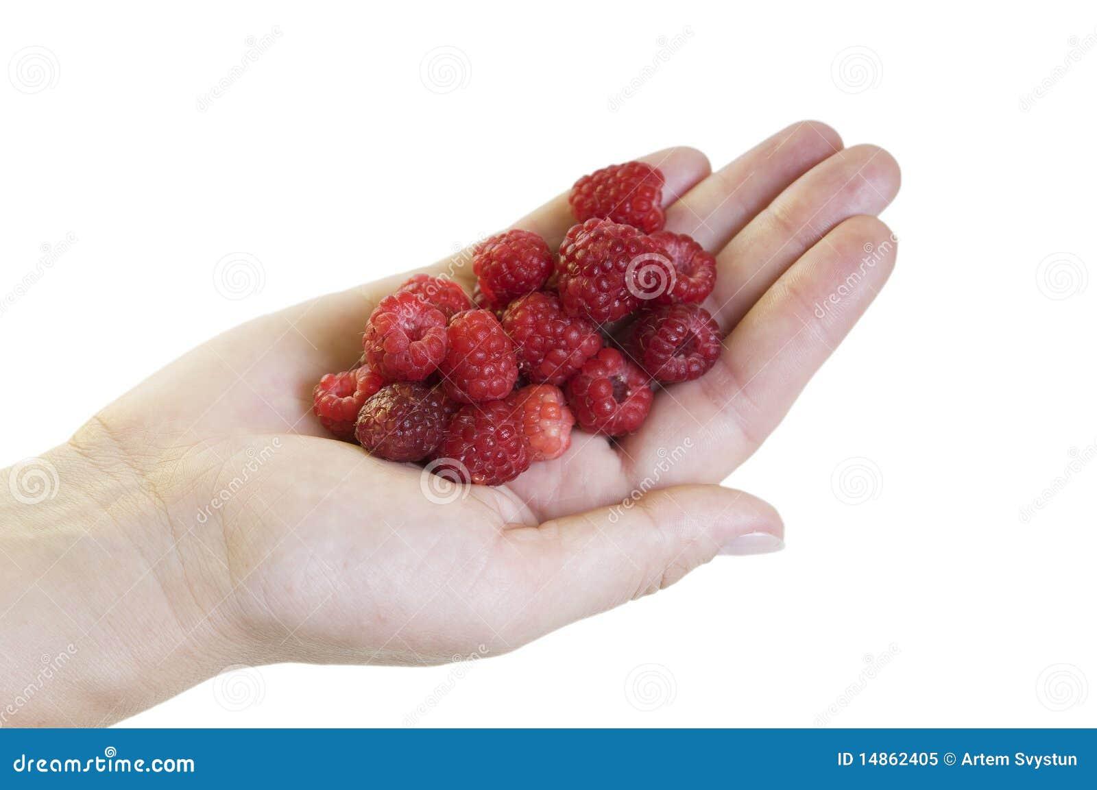 Hand with raspberries