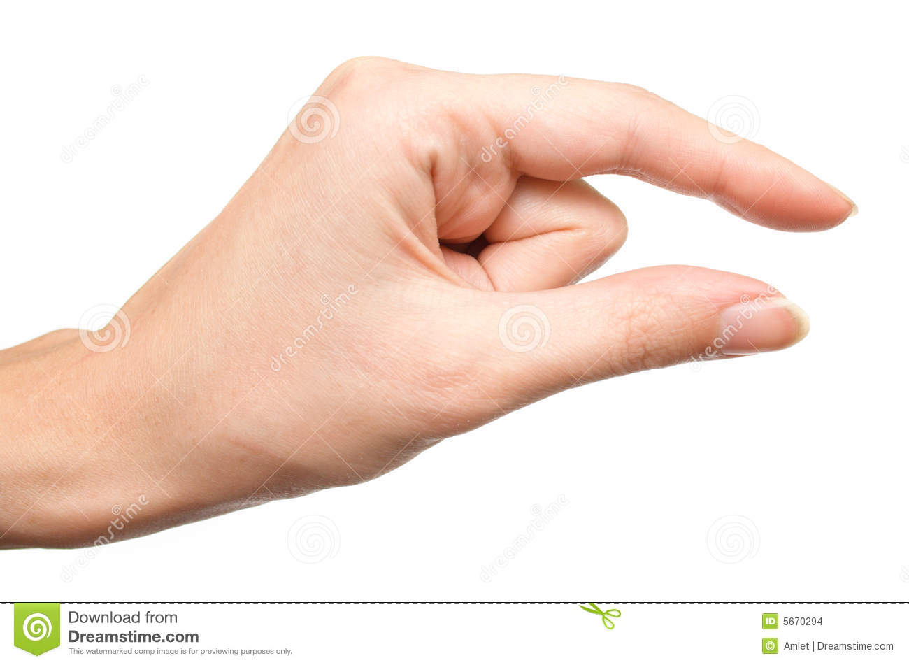 hand showing the small size 3 stock images image 5670294 magnifying glass clip art images magnifying glass clip art images