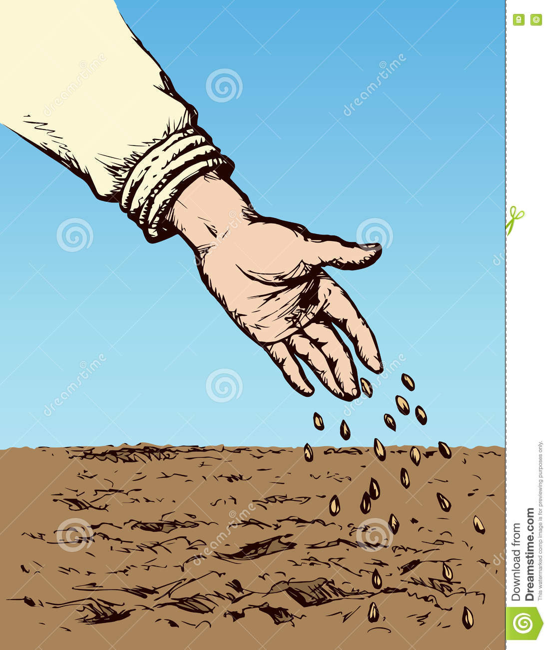 Hand Sowing Seed In Plowed Field Vector Drawing Stock