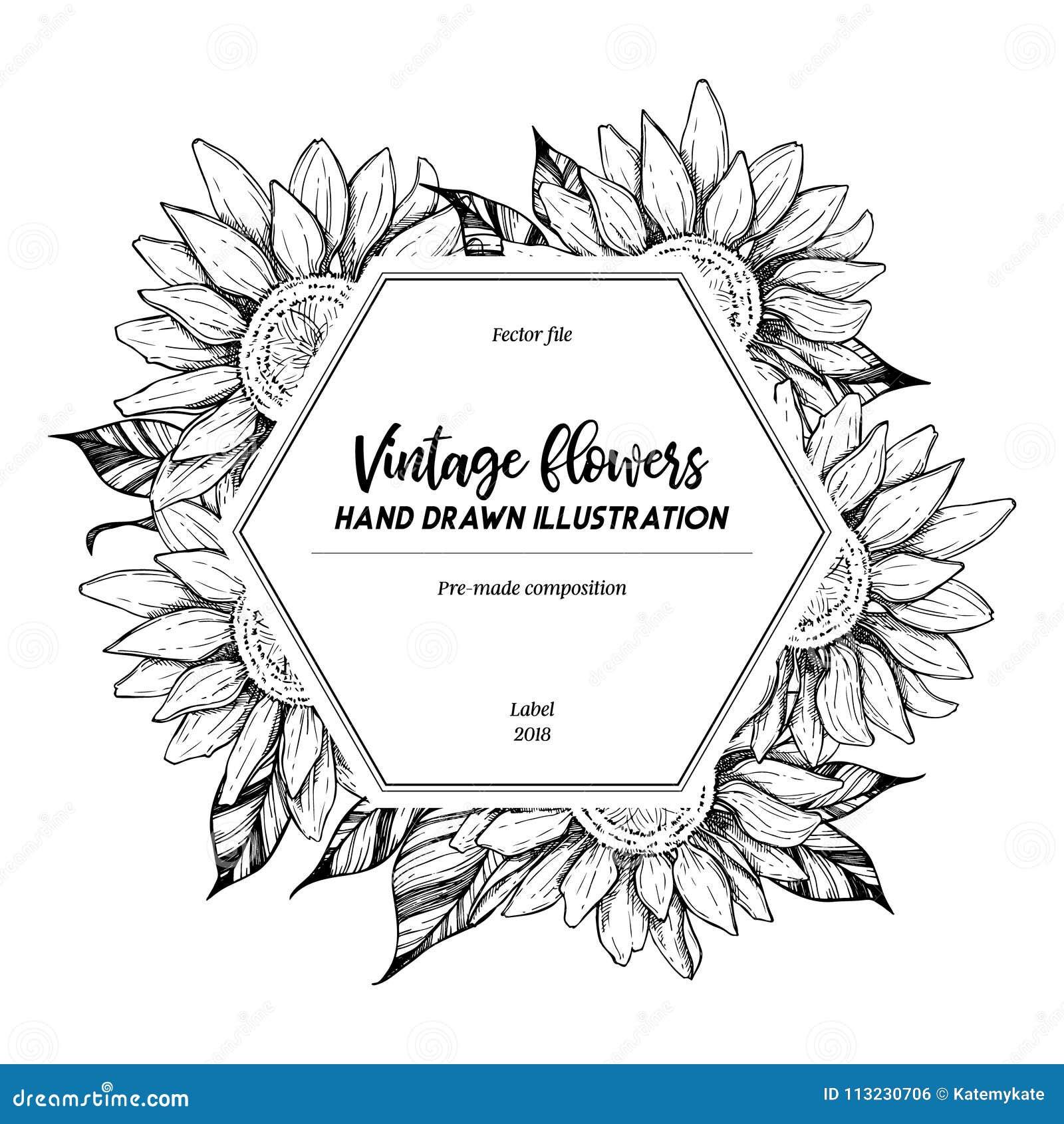 Hand tecknad vektorillustration Etikett med solrosor _