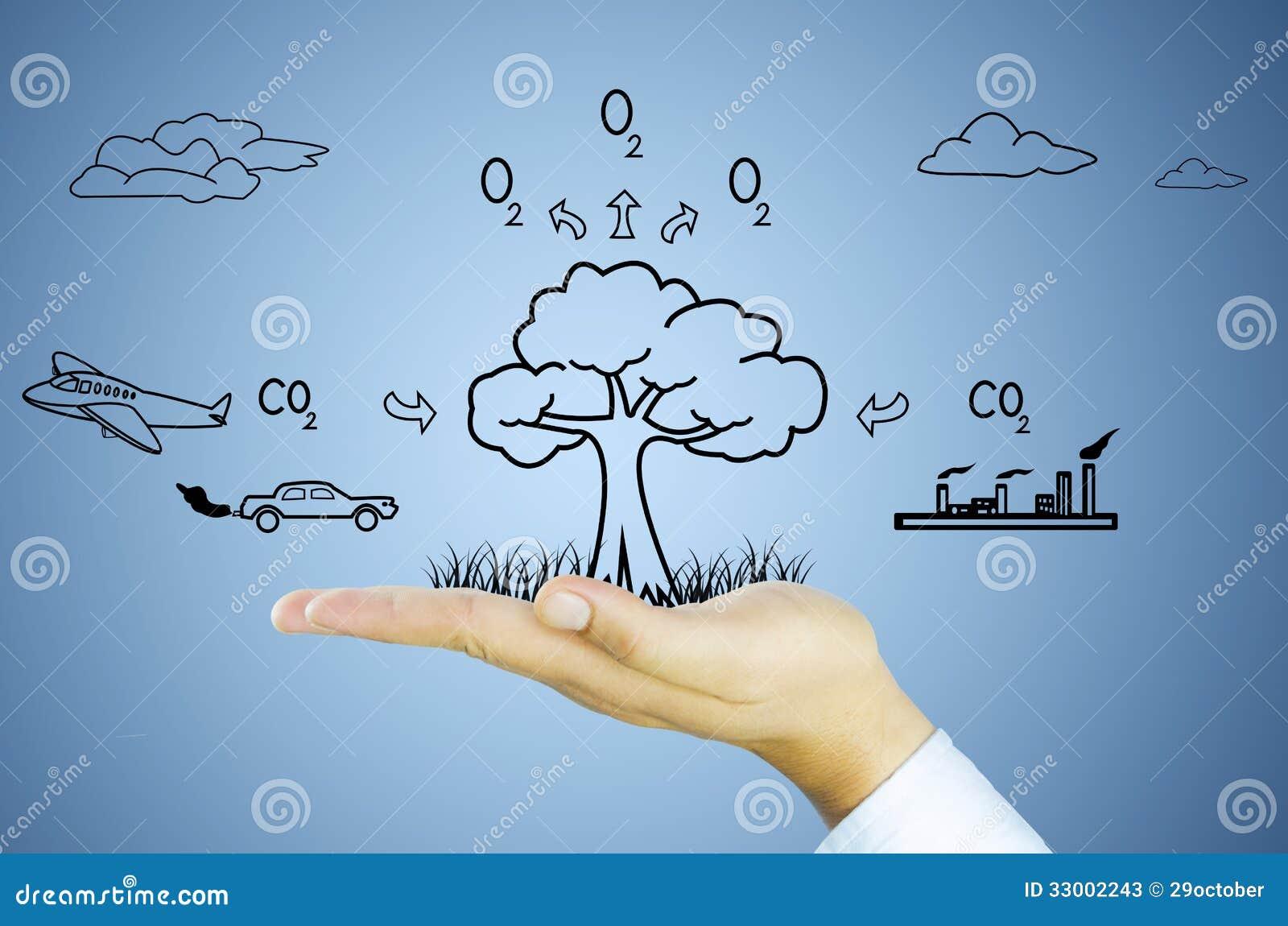 hand with tree decrease global warming  photosynthesis Sun Clip Art photosynthesis clip art in detail