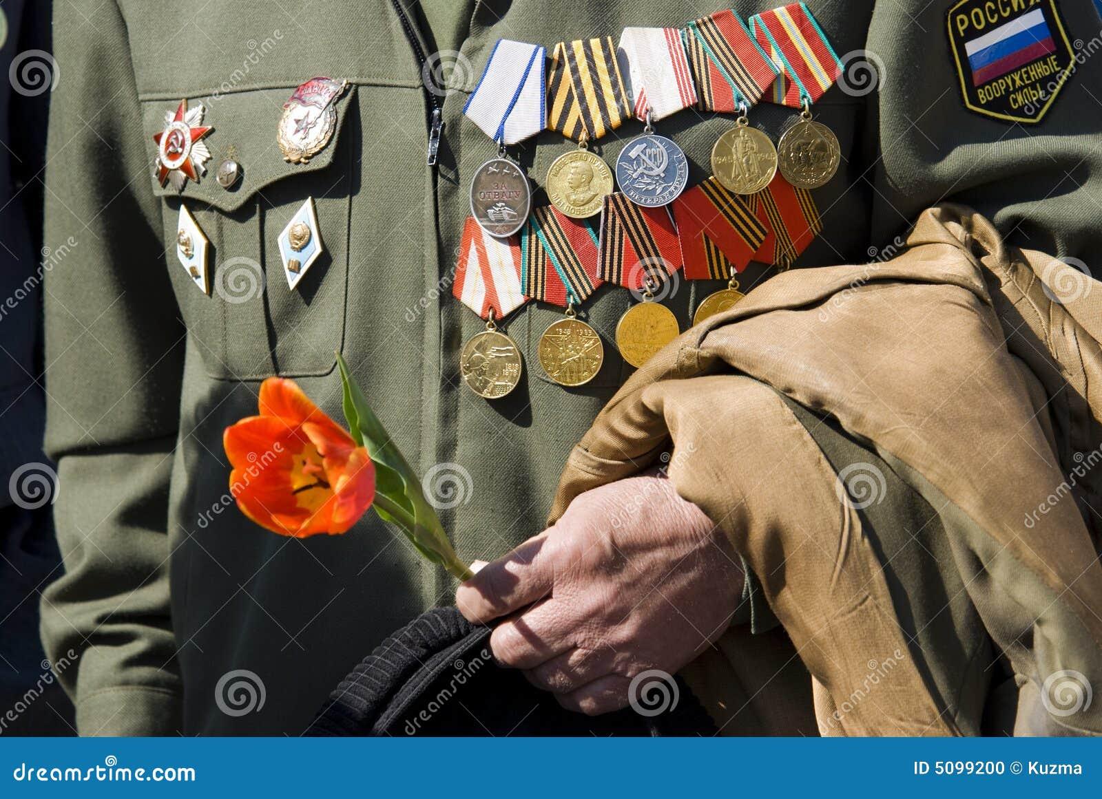 Hand van oorlogsveteraan met tulp