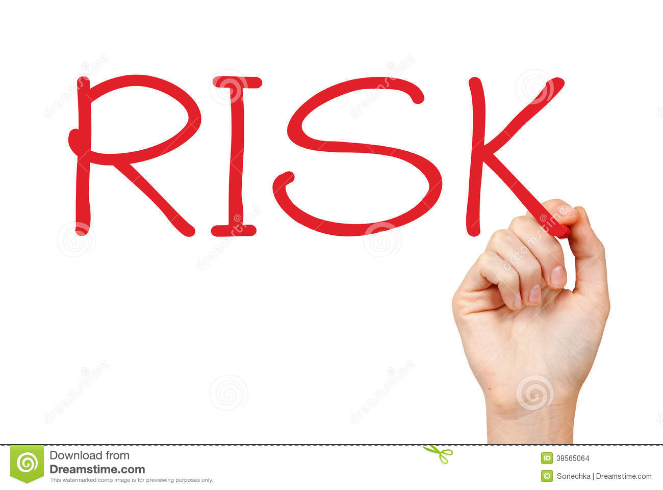 risk management essay risk management plan template example
