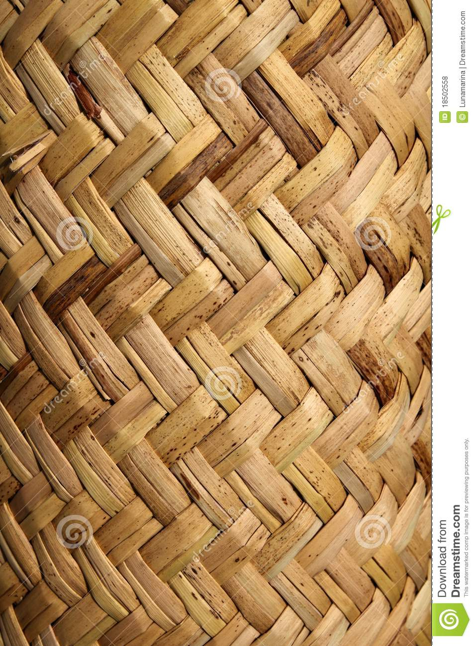 Handcraft Mexican Cane Basketry Vegetal Texture Royalty
