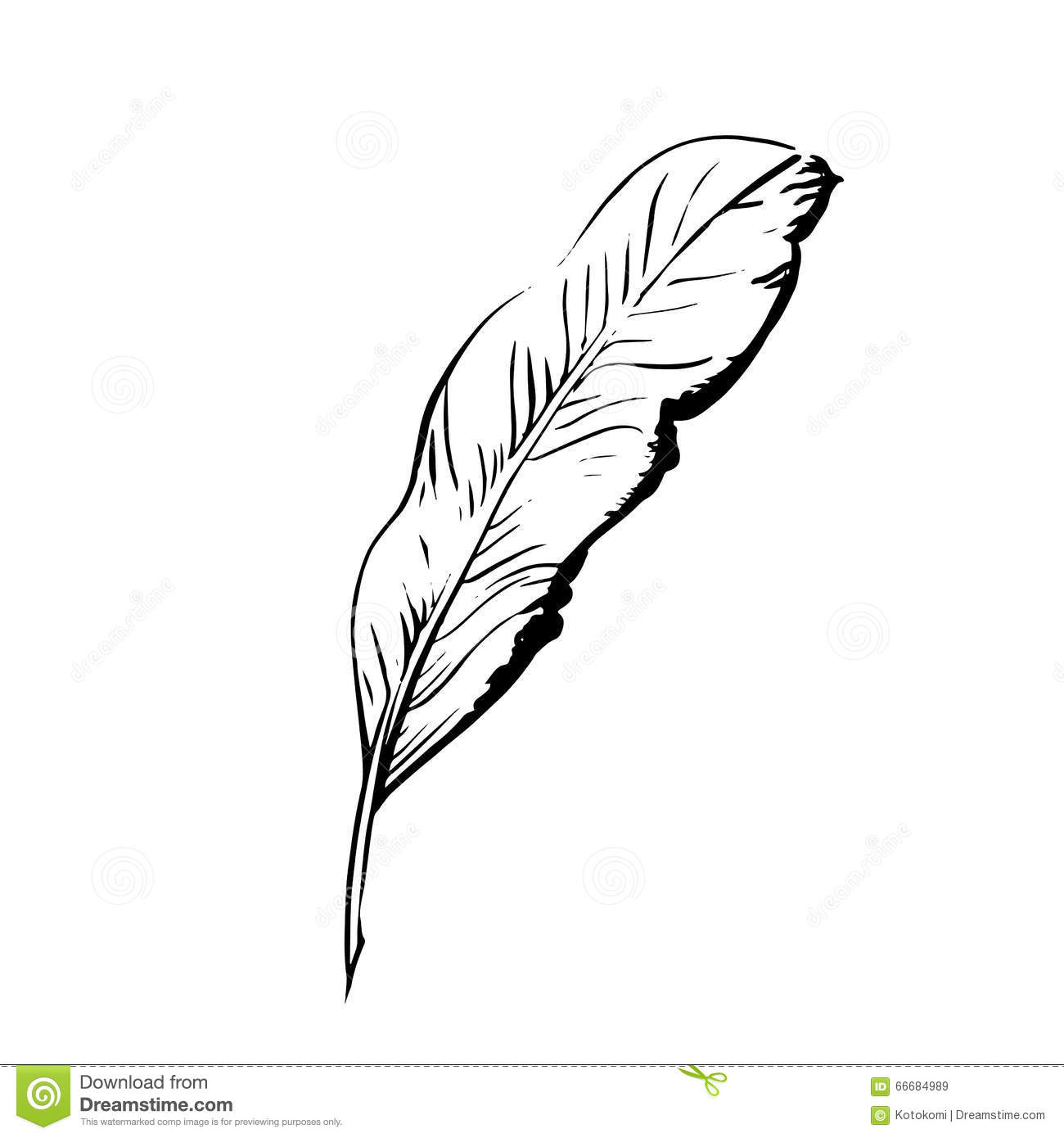 Handdrawn bird feather symbol of knowledge writing and learning vector black and white - Symbole de la plume ...