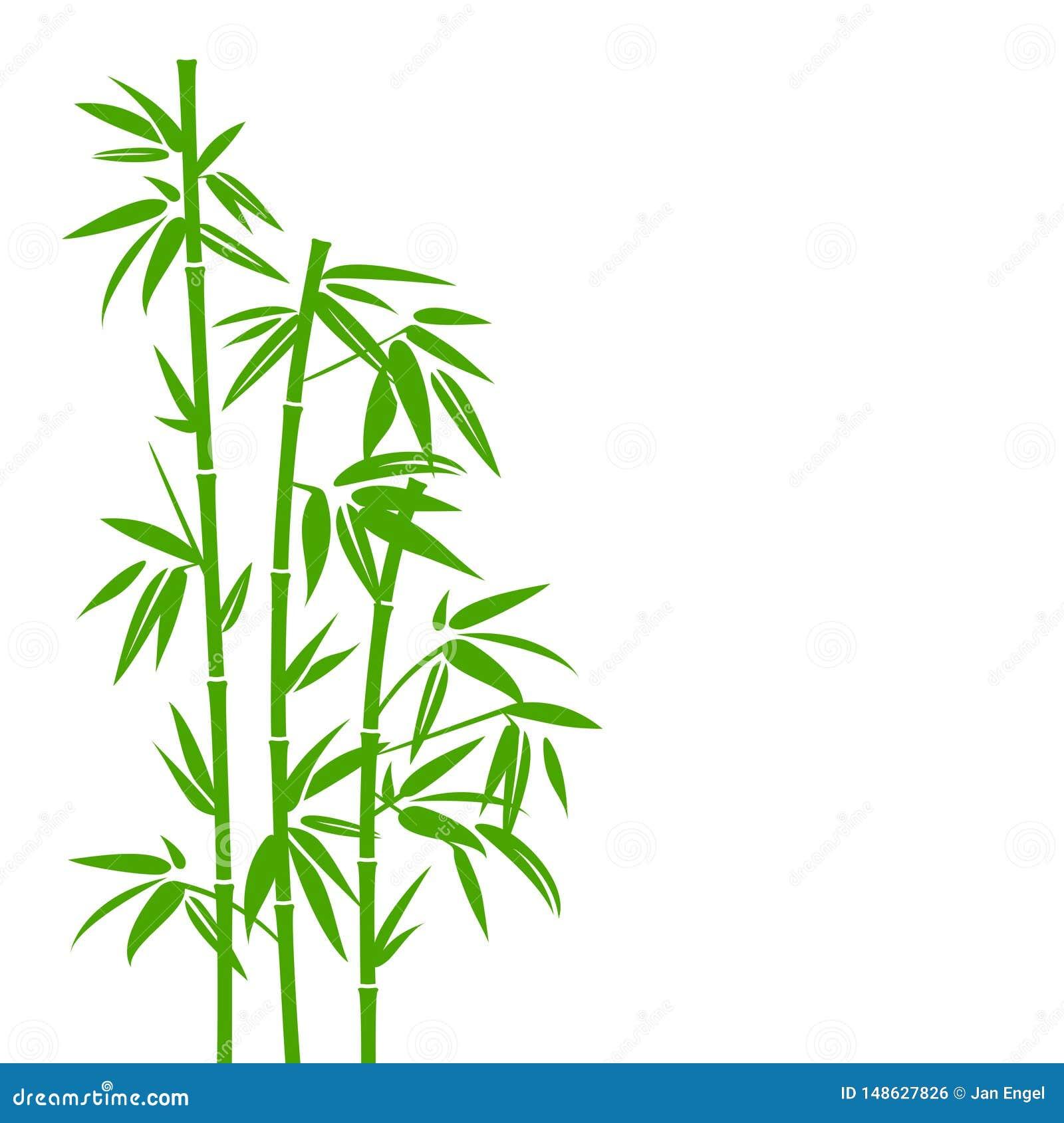 Handdrawn Zielony Bambusowy ro?liny t?o