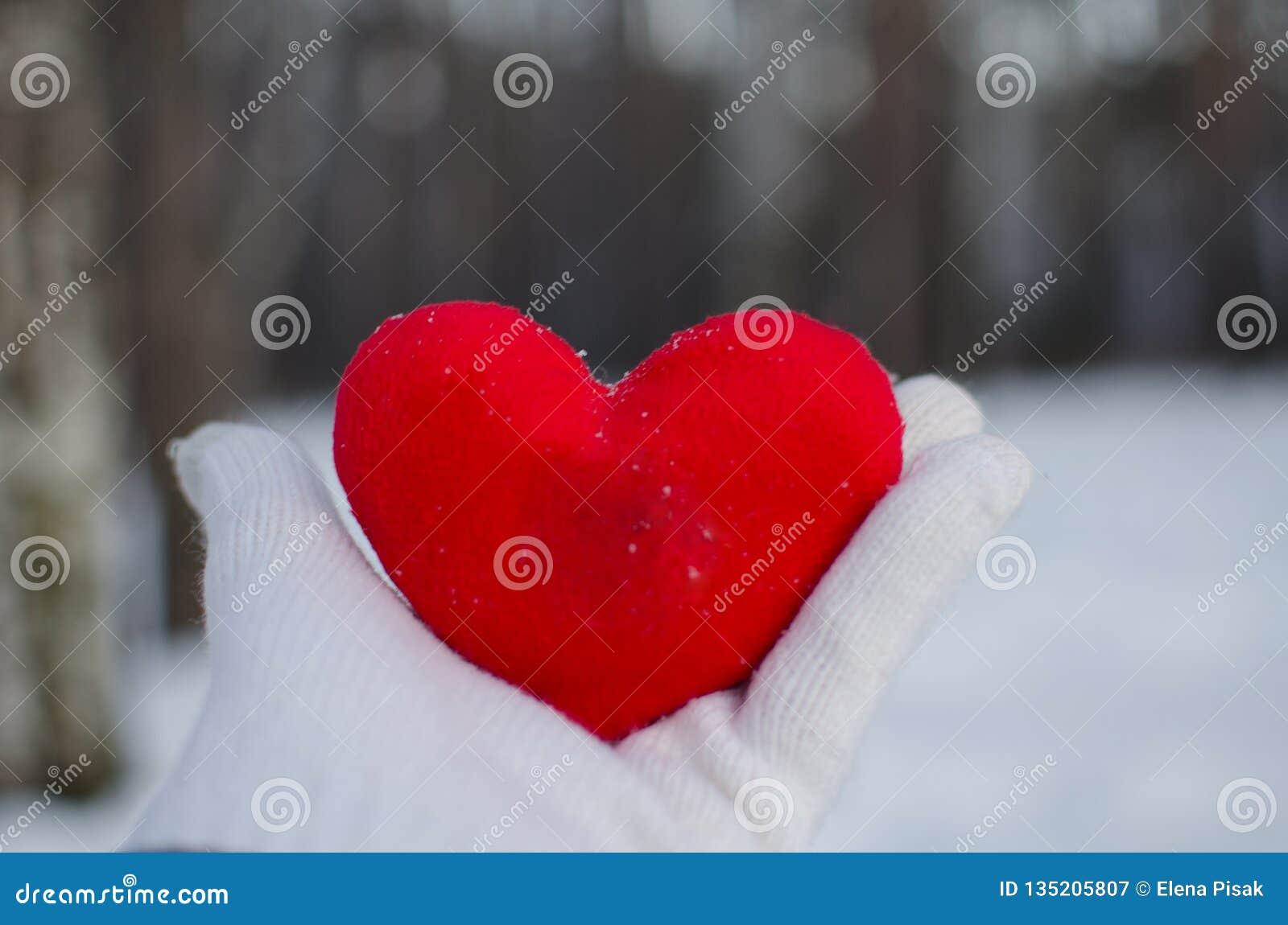 Handen av en man eller en kvinna i en vit handske rymmer en röd hjärta i vinterskogen mot den vita snön