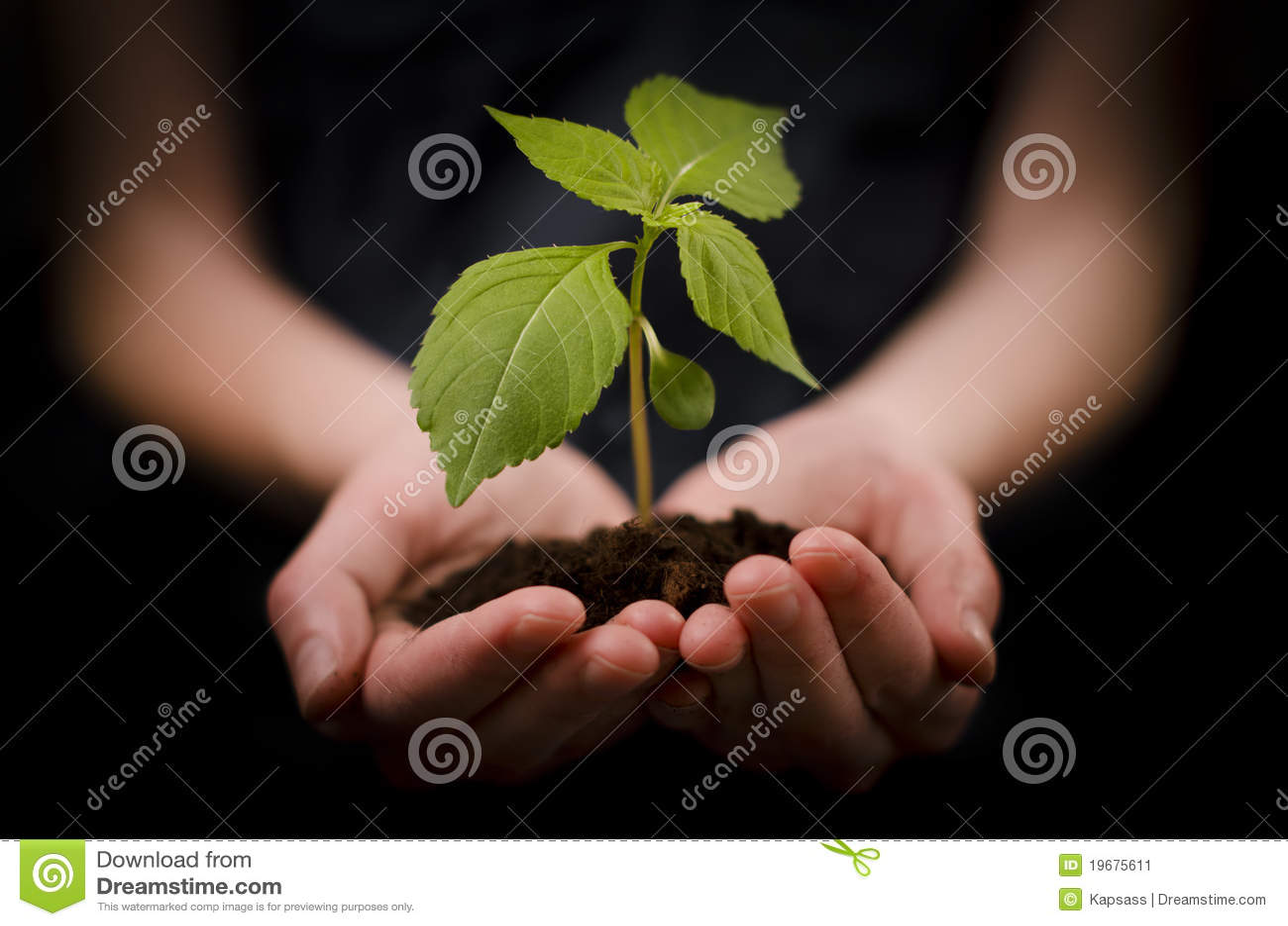Handen die babyinstallatie of de Groei en Ontwikkeling houden