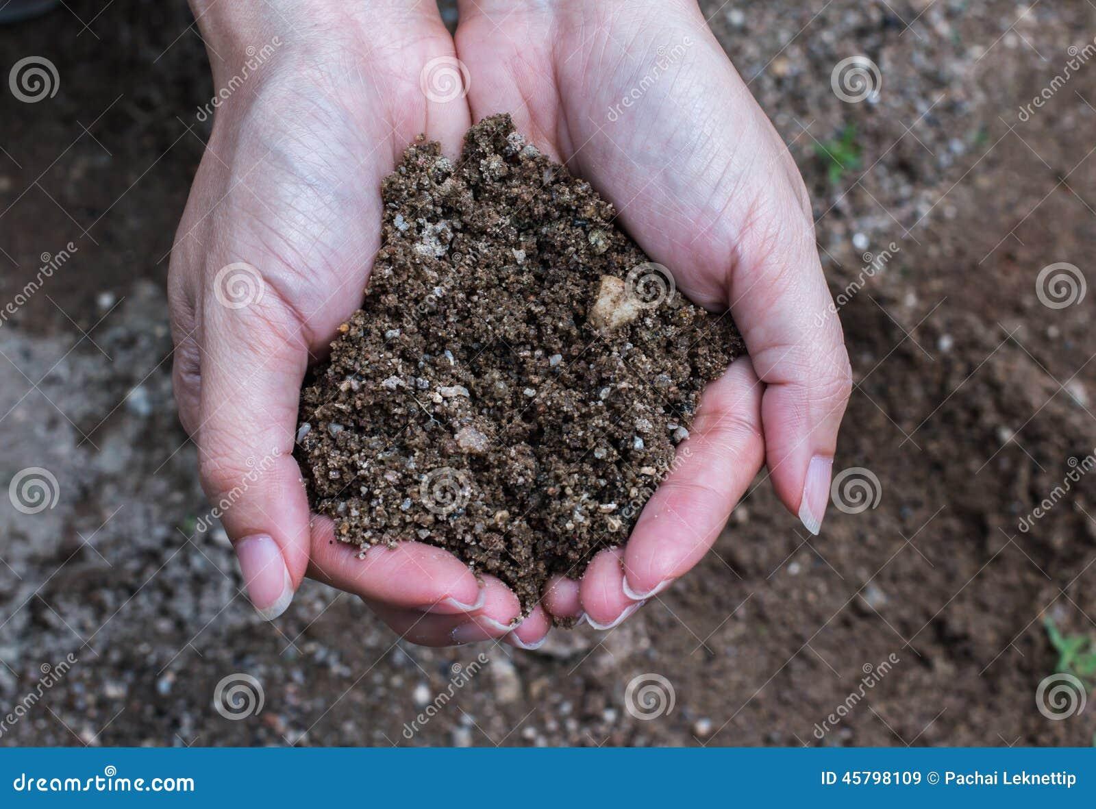 Handfull Rich Soil
