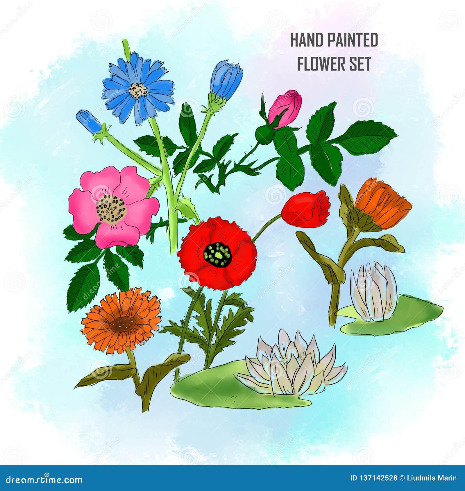 Handgemalte gesetzte Blume auf Aquarellhintergrund