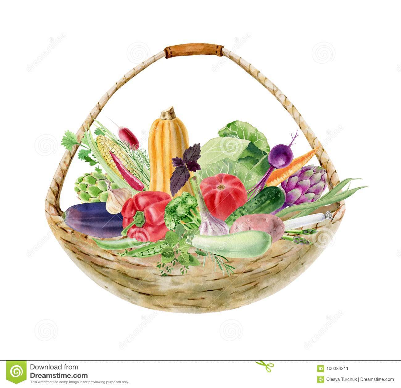 Handpainted watercolor clipart with fresh vegetables in basket