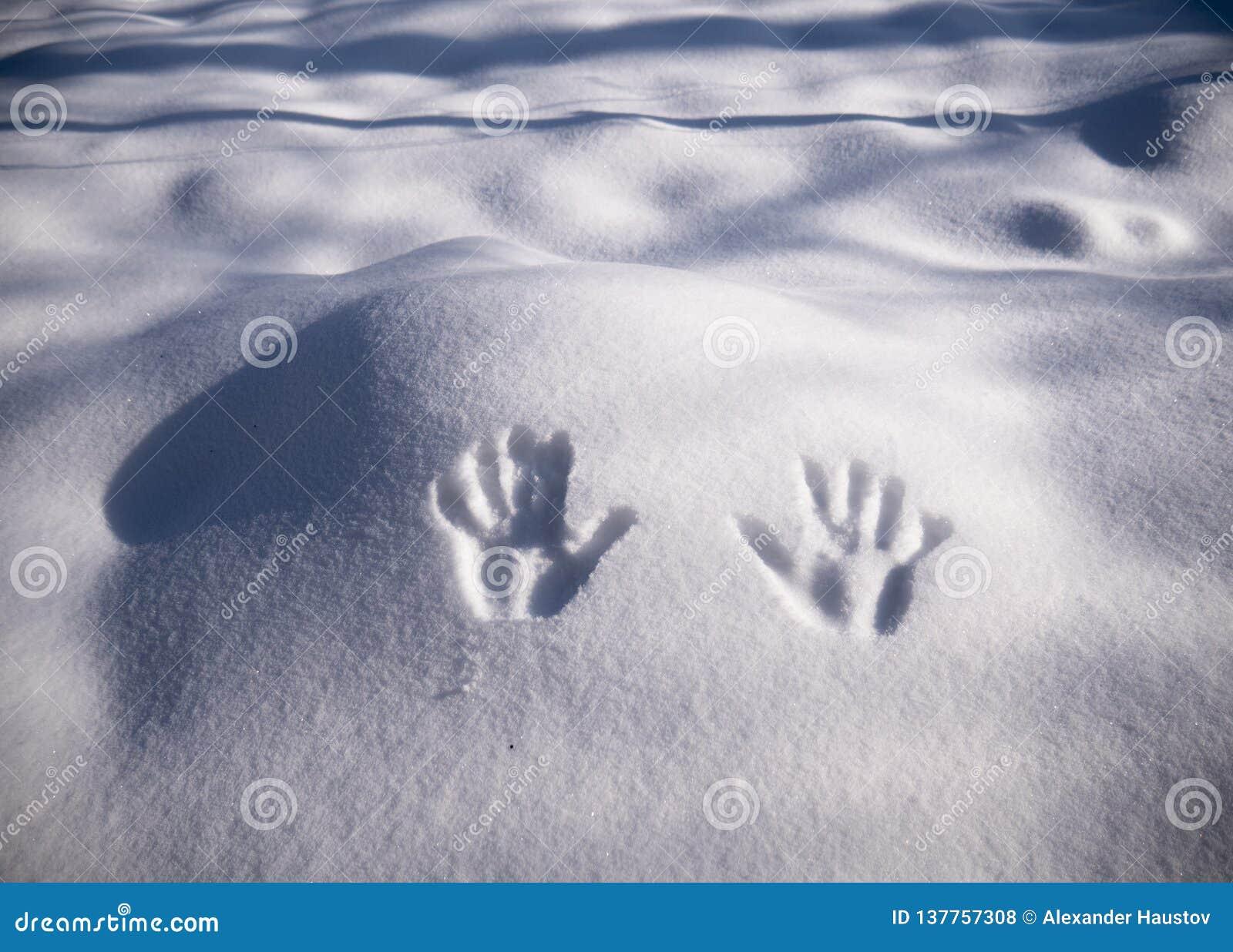 Handprint på snö Avtryckhänder på snö