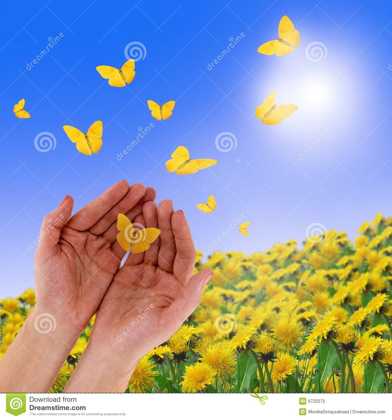 Hands and butterflies