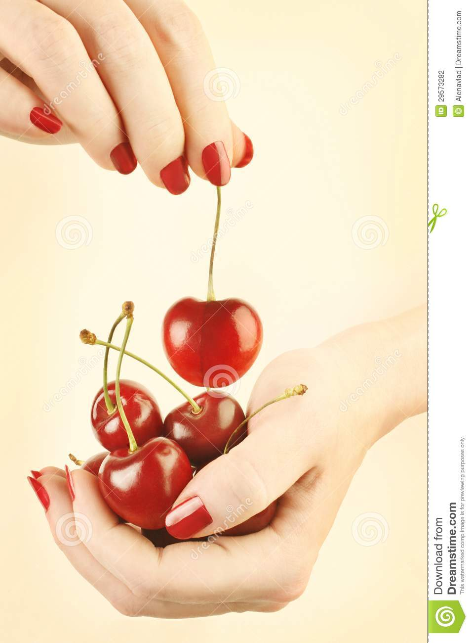 Hands cherry with red nails manicure
