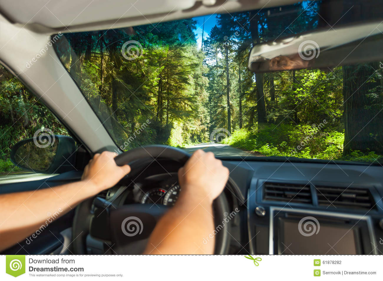 Hands of driving man inside the car in Redwood